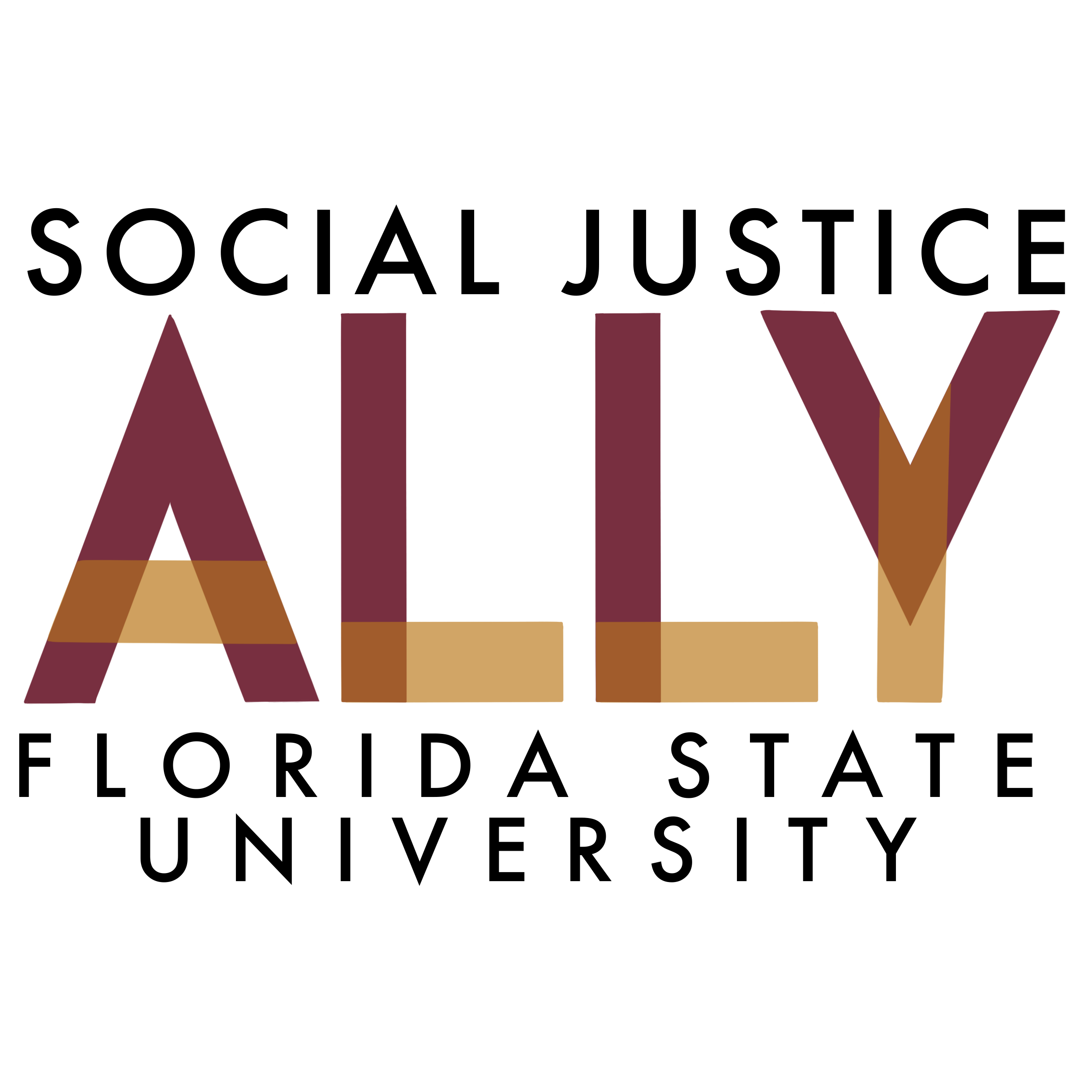 Social Justice Ally Training Florida State University