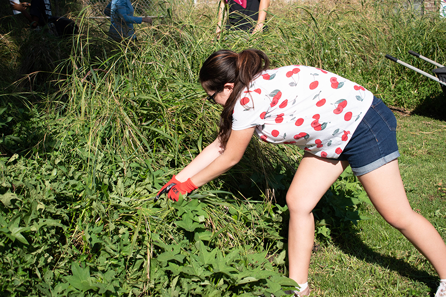 EngageTLH volunteer Jadia Johnson pulls weeds and overgrowth during a Damayan Community Garden trip.