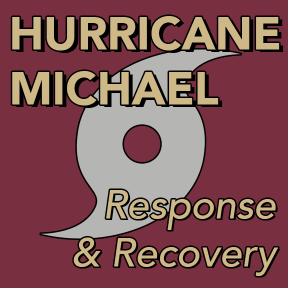 "IMAGE: The words ""Hurricane Michael Response & Recovery"" superimposed over a hurricance symbol."