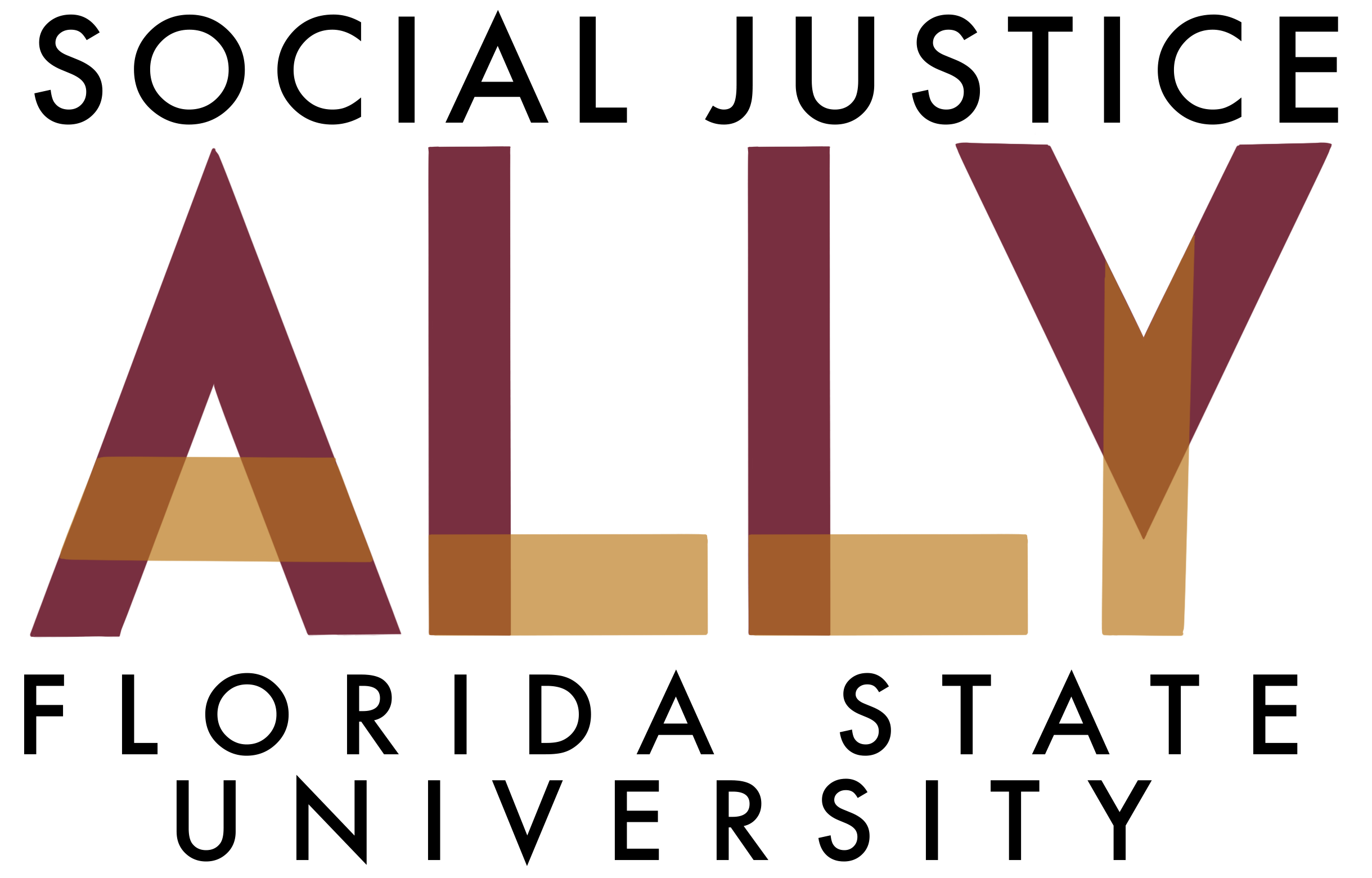 Social Justice Ally Florida State University