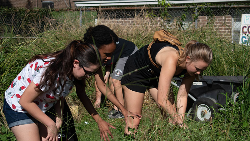 Students pulling weeds as a form of service.